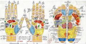 एक्यूप्रेशर चिकित्सा पीडीएफ हिंदी में मुफ्त डाउनलोड | acupressure Chikitsa PDF In Hindi Free Download